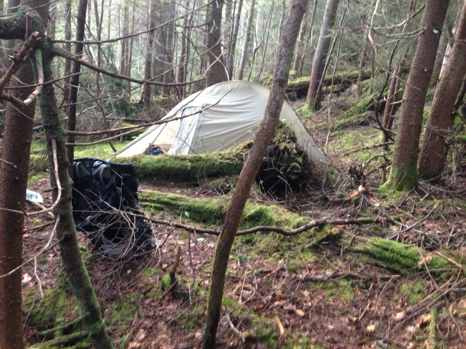 Tent near John's Brook
